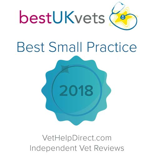 best UK vet 2018